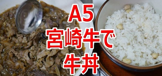 ASMR ふるさと納税宮崎牛で牛丼