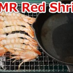 The man who burns Red Shrimps赤エビを焼く男 ASMR